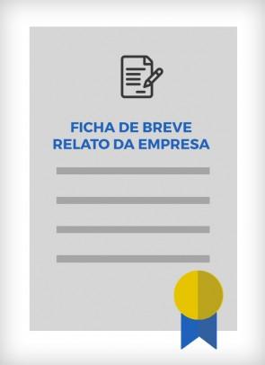 Ficha de Breve Relato da Empresa (São Paulo - Estadual)